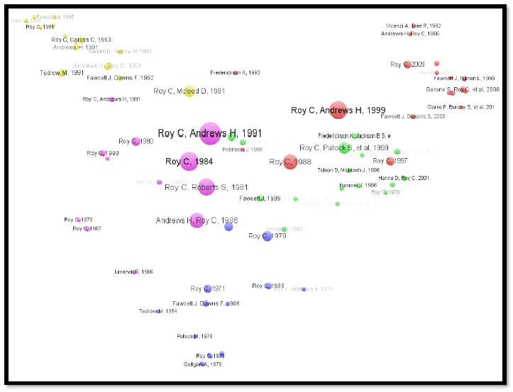 Figure 1.  Bibliometric mapping of citations and co-citations by authors and publication year